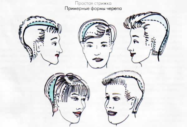 Форма головы прическа