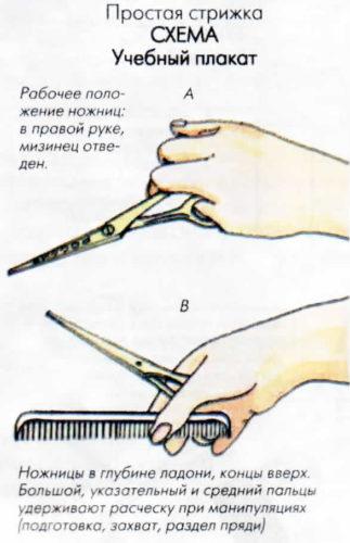 Простая стрижка - техника выполнения
