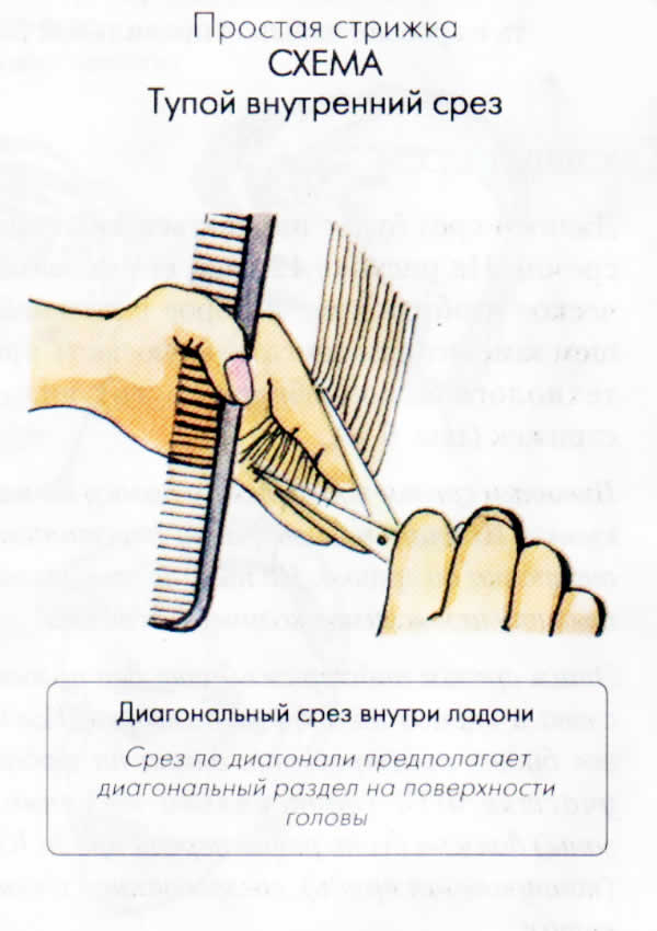 Виды техник стрижек
